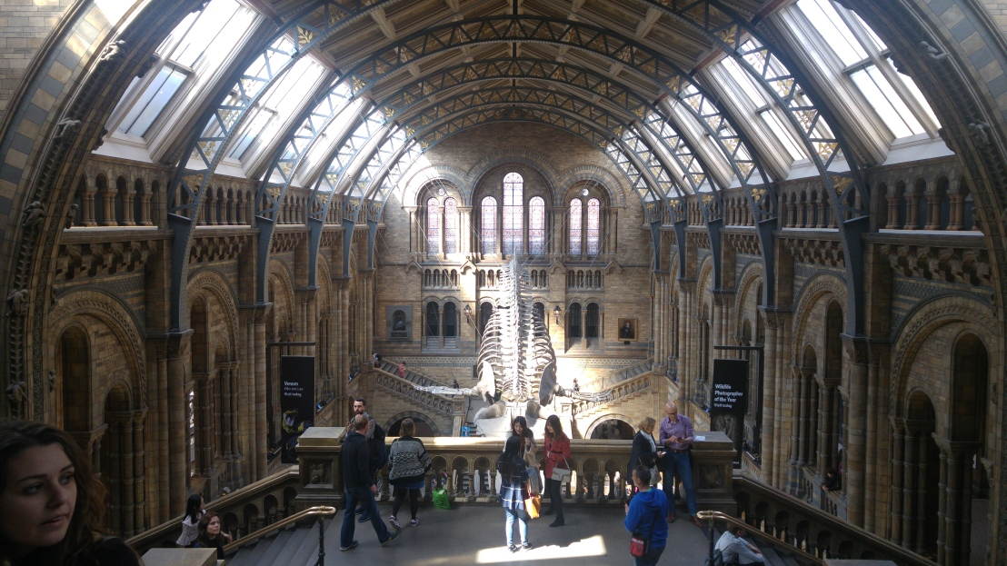 London trip - Natural History Museum Hall