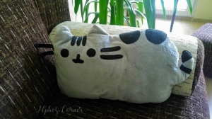 DIY Pusheen pillow on a sofa