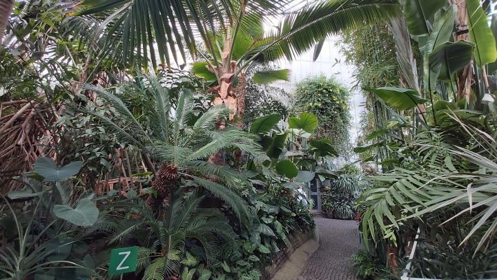 indoor-gardens-palmiarnia-gliwice-6.jpg