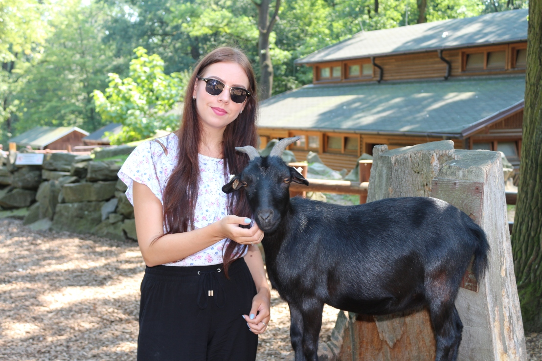 Posing with a small, black goat in a pet zoo in Ostrava