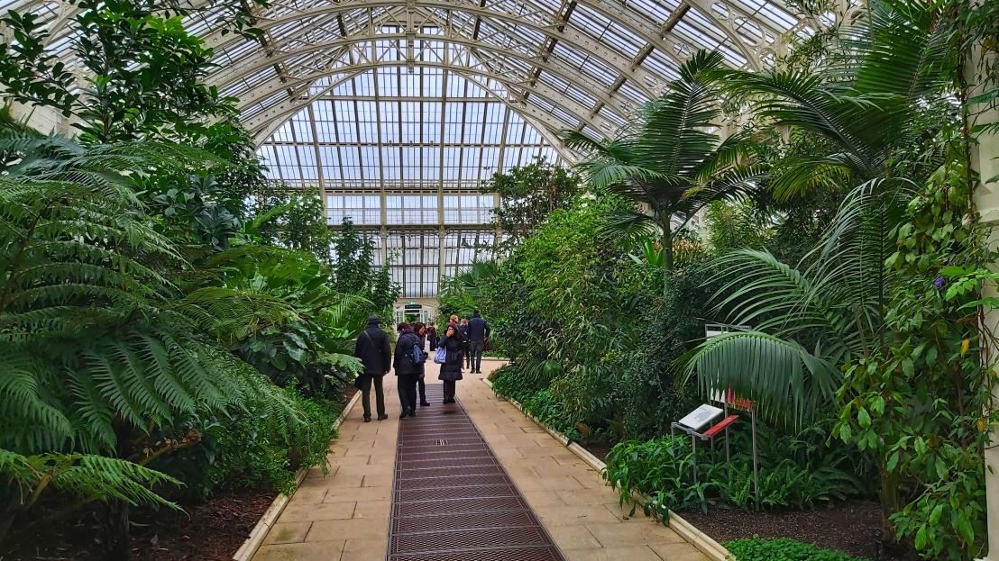 Indoor tropical gardens in London