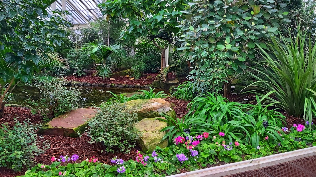 An indoor pond surrounded by plants in Kew Gardens