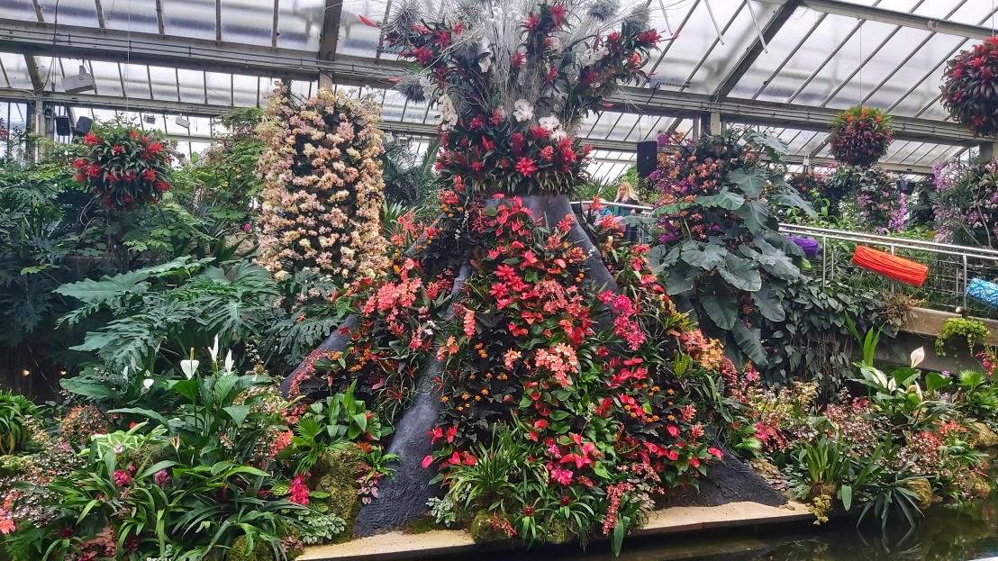 An orchid exhibition in Kew Gardens