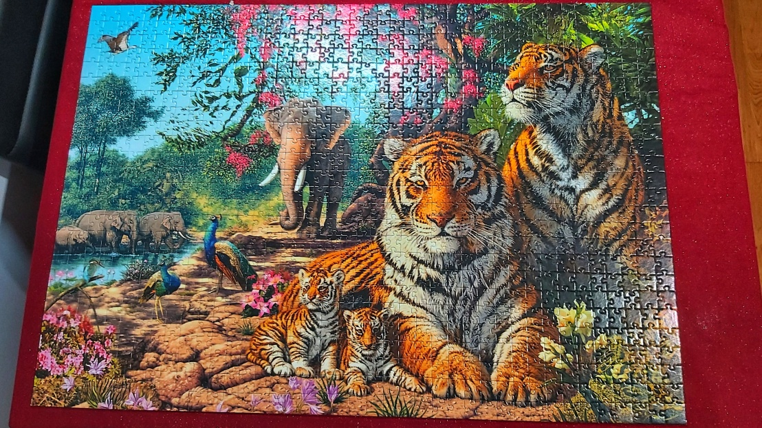 Completed jigsaw puzzle - tigers