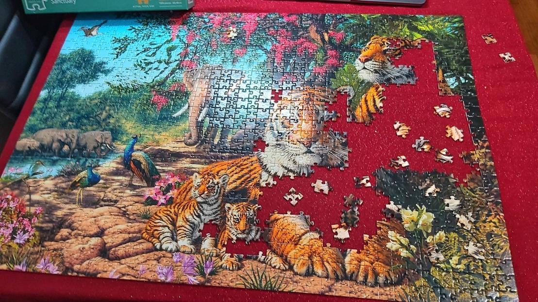 Jigsaw puzzle in progress - tigers