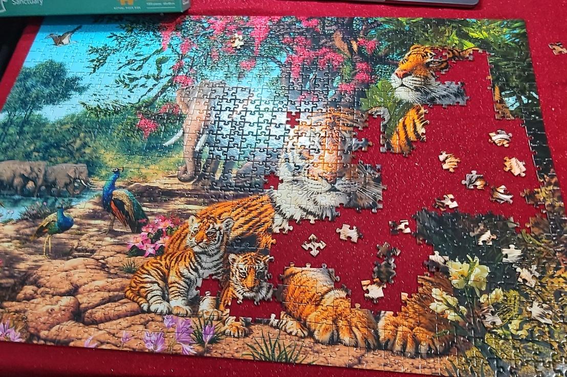 Home Activities – JigsawPuzzles