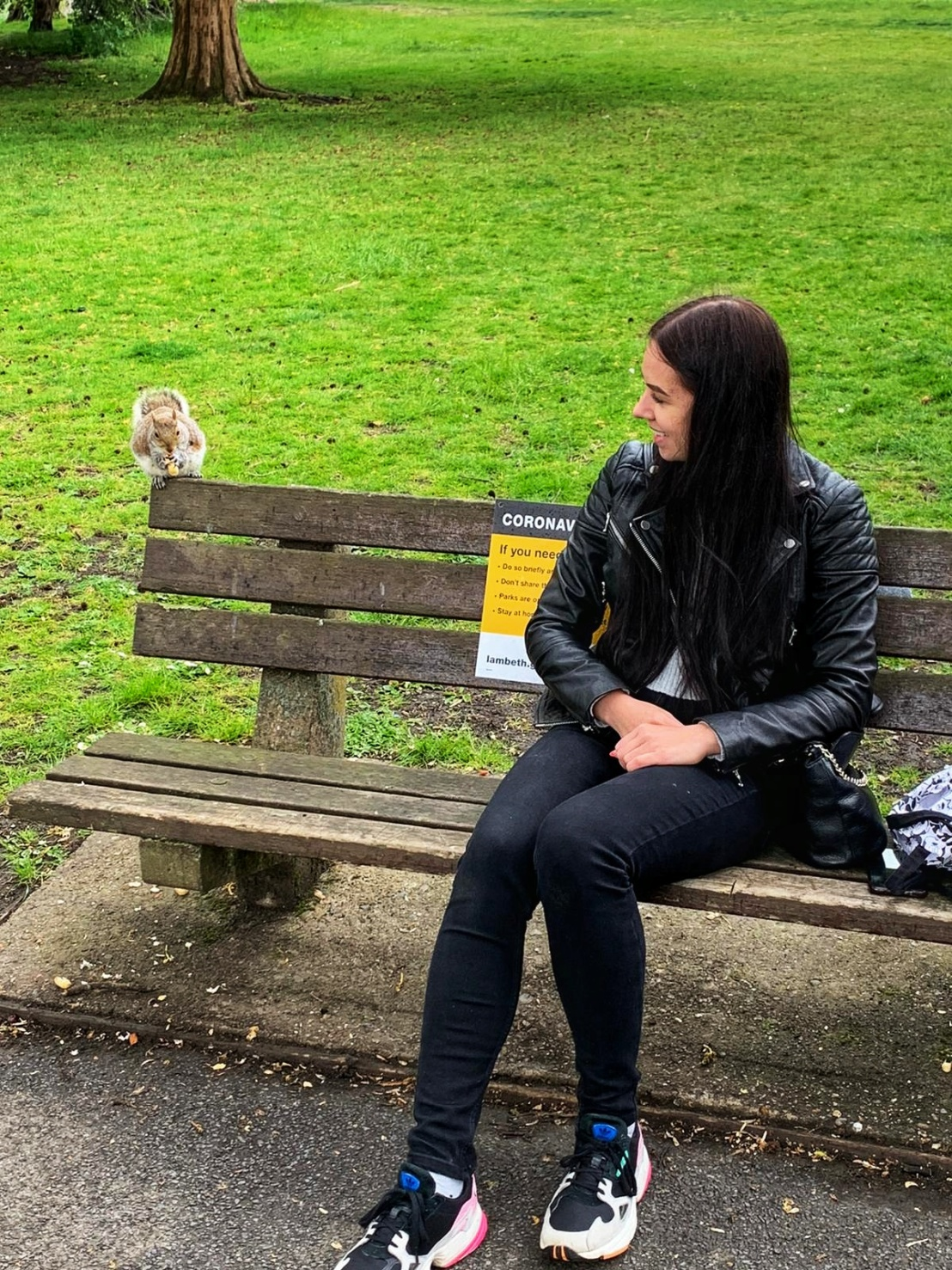 A red squirrel on a bench next to a woman - Ruskin Park, London