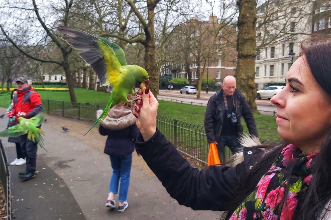 London Parks – St James'sPark