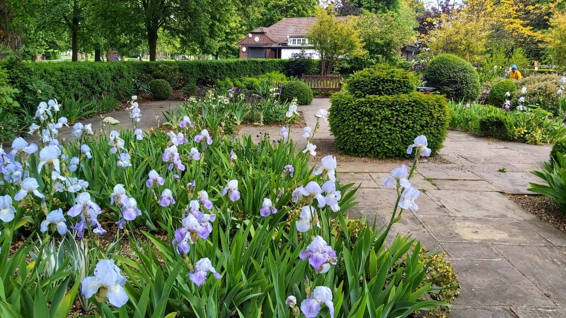 London parks - West Ham Park - purple flowers and a hut