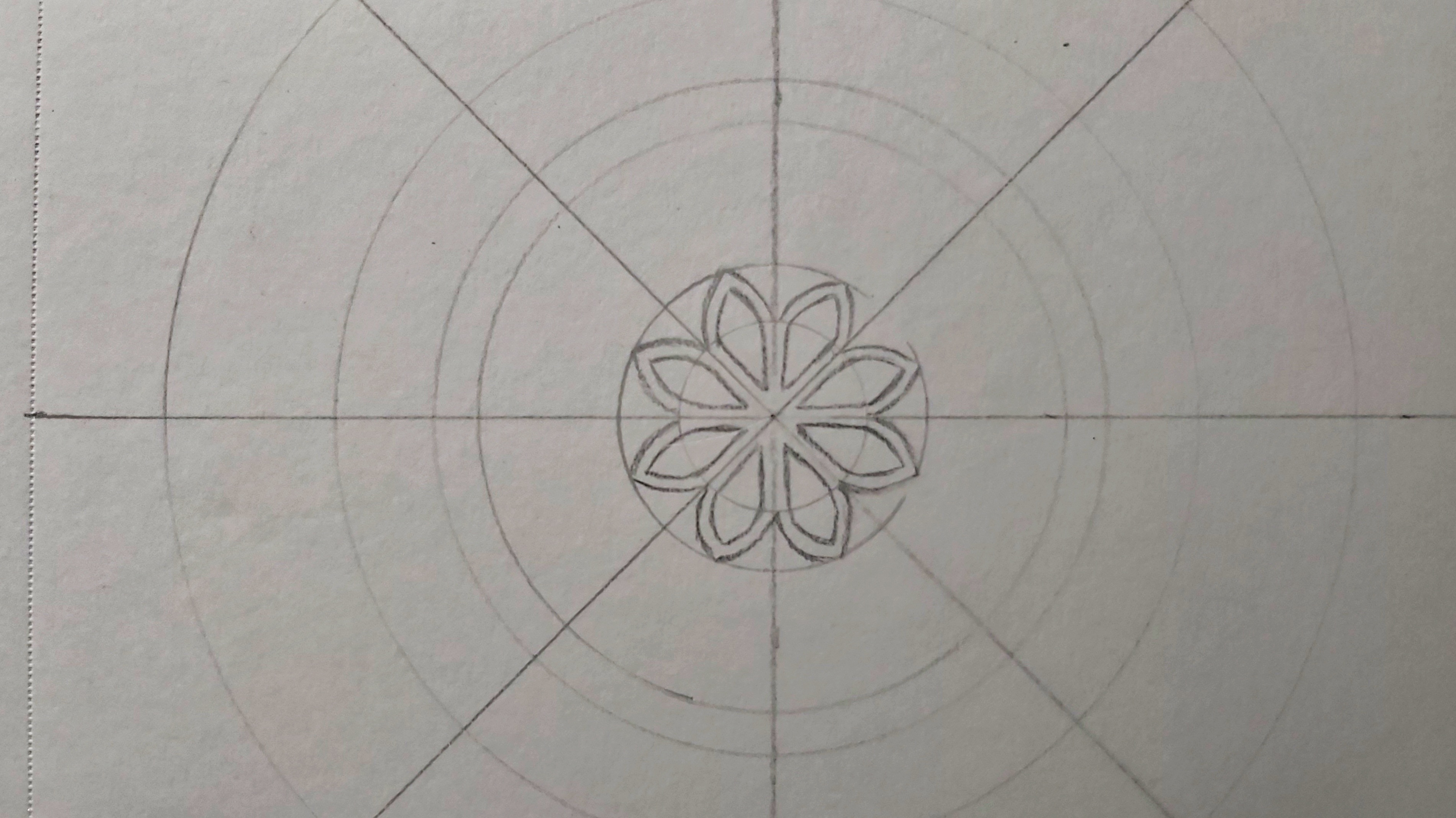 The first petals in the first circle, pencil